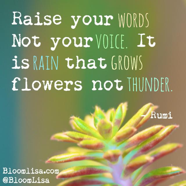 Raise_Rumi_HB2015