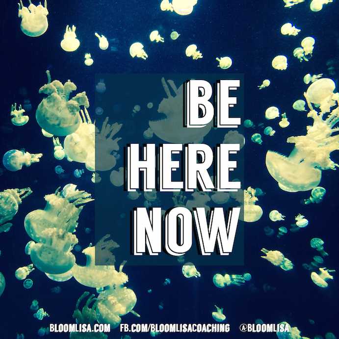 beherenow_jellies_HB2015