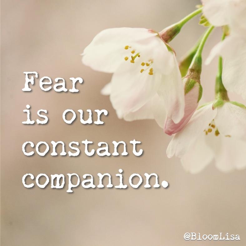 fear_constant_companion